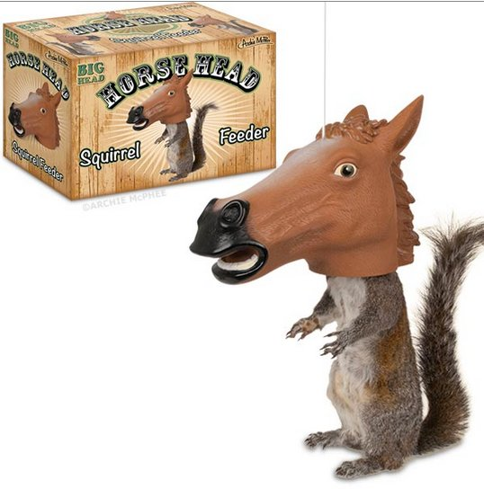 squirrel_horse_head