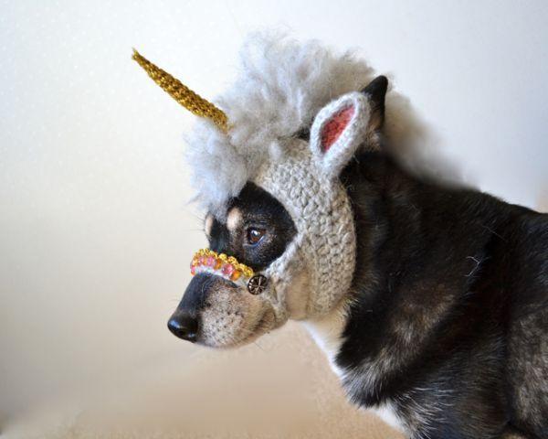 Unicorn_dog