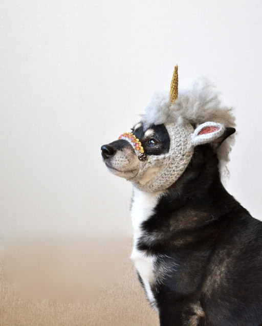 Unicorn_dog3