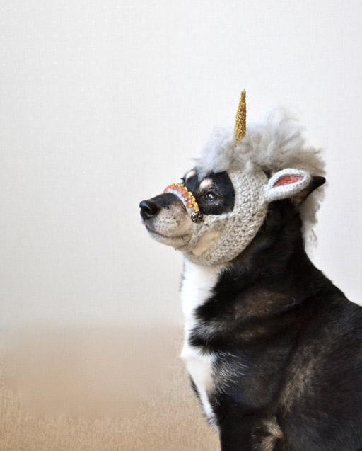 Unicorn_dog3