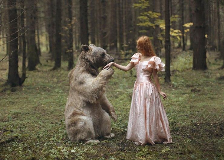 katerina-plotnikova-bear