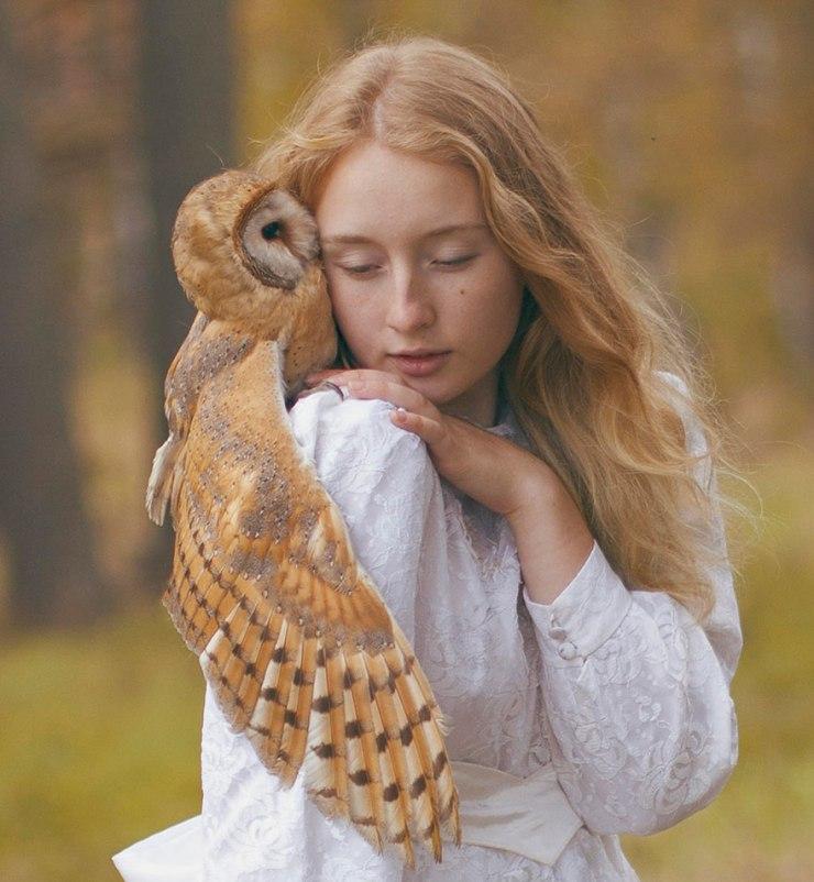 katerina-plotnikova-owl
