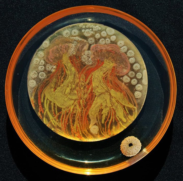 bacteria-art-12